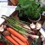 carrots shrooms herbs et al