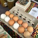 VENDOR_Our Place_giant eggs