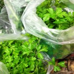 parsley in bags